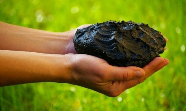 Лечебная грязь — лекарство от природы