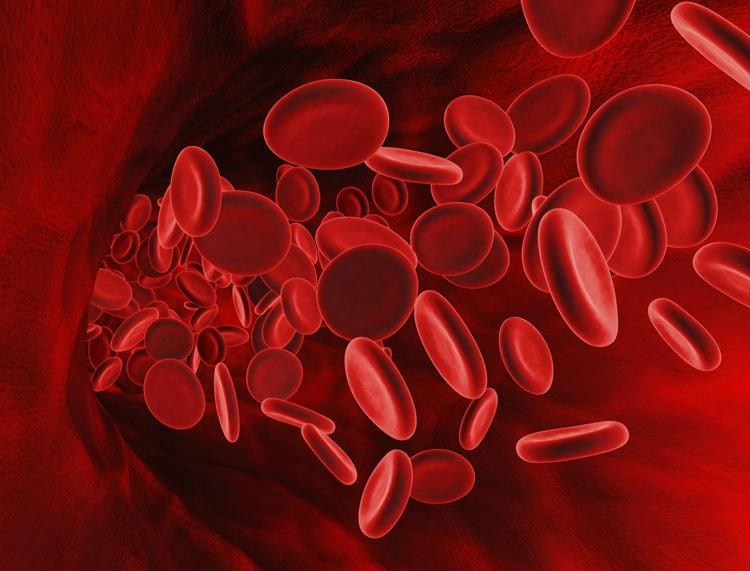 Норма гемоглобина у женщин 30–35 лет