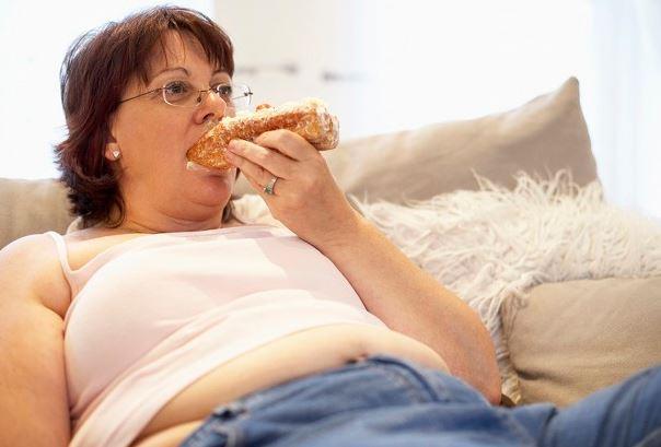 Неправильное питание малоподвижный образ жизни